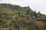 Rural village in Madagascar