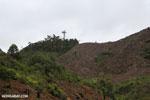 Slash and burn deforestation outside Tamatave [madagascar_tamatave_0154]