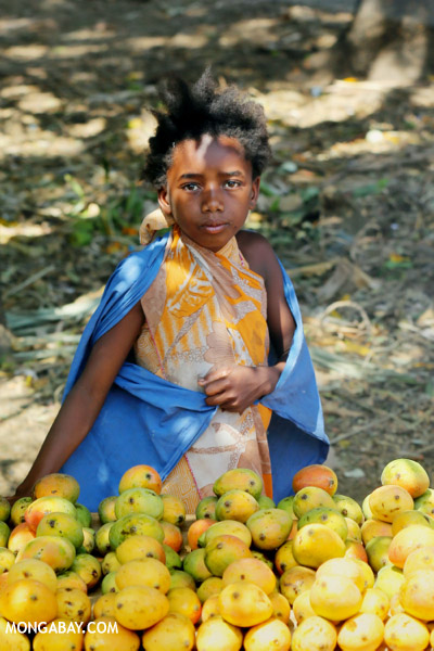 Girl selling mangos alongside a road