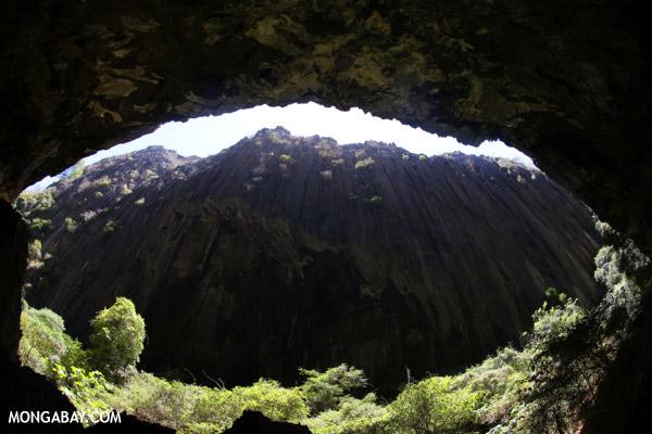 Cave in Western Ankarana