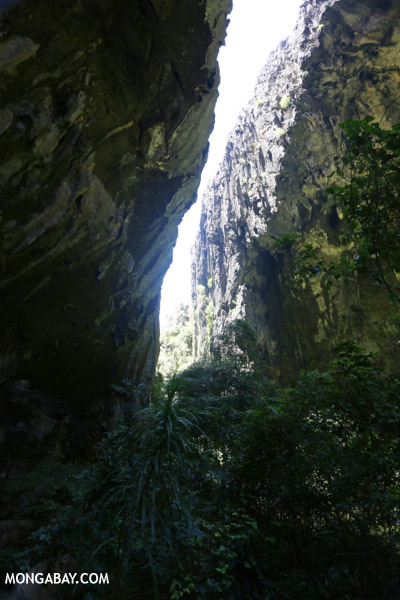 Canyon in Western Ankarana