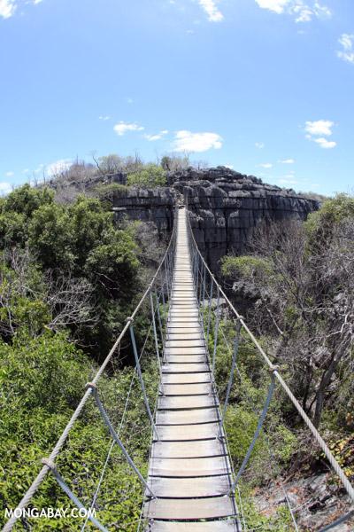Tsingy bridge