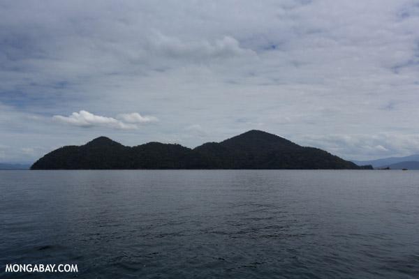 Nosy Mangabe, the big blue island