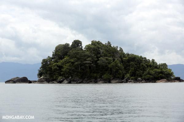 Island near Nosy Mangabe