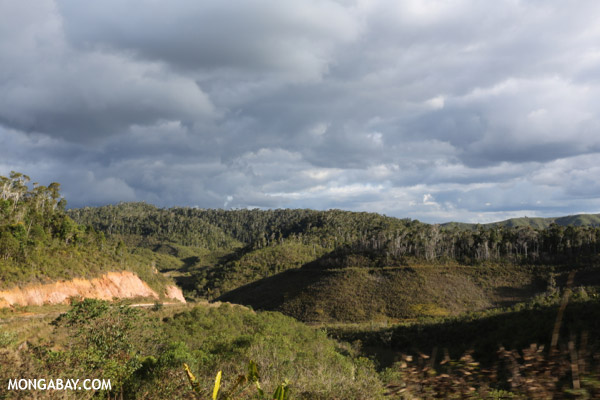 Scrub outside a protected area in Madagascar