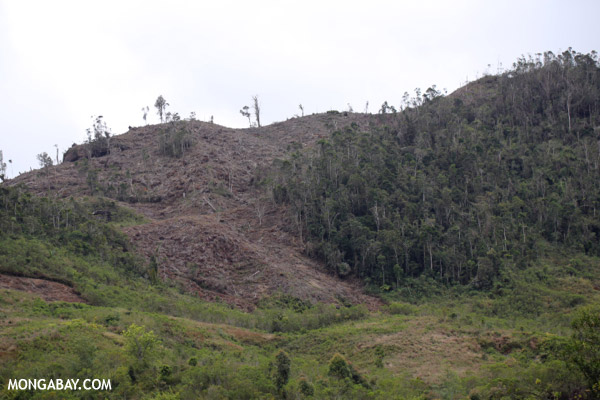 Slash and burn deforestation in Madagascar