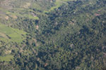 Aerial view of deforestation and plantation trees in Madagasar [madagascar_1785]