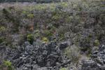 Overhead view of the tsingy in Ankarana