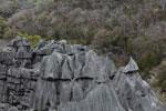 Tsingy [madagascar_3938]