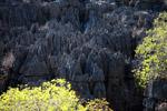 Limestone tsingy [madagascar_4140]