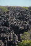 Limestone tsingy [madagascar_4142]