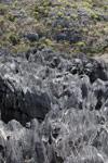 Tsingy [madagascar_4403]