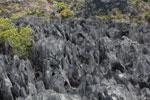 Tsingy [madagascar_4412]