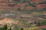 Terraced rice fields of Madagascar's Central Highlands