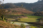 Village amid terraced rice fields in Madagascar's Central Plateau