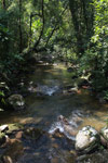 Ranomafana rainforest creek [madagascar_5480]