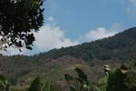 Deforestation near Ranomafana [madagascar_5554]