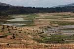 Terraced rice fields near Fianarantsoa [madagascar_5625]