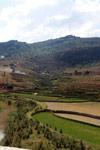 Terraced rice fields near Fianarantsoa [madagascar_5630]
