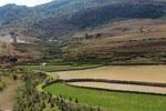 Terraced rice fields near Fianarantsoa [madagascar_5632]