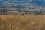 Crossing the Tsaranoro Valley [madagascar_5957]