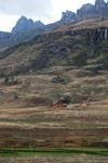 Rice fields in the Antanifotsy Valley [madagascar_6186]