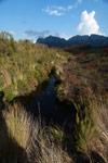 Andringitra creek [madagascar_6371]
