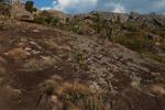 Andringitra landscape [madagascar_6715]