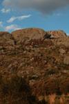 Andringitra landscape [madagascar_6748]