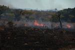 Fire in Madagascar [madagascar_6928]