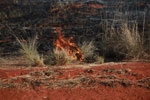 Grass fire in Madagascar