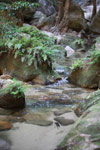 Creek in Canyon des singes