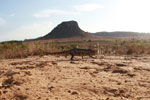 Oustalet's chameleon walking across sand near Isalo [madagascar_7349]