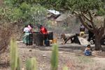 Rum distillery in southwestern Madagascar