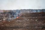 Grassfire [madagascar_7522]