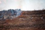 Grassfire [madagascar_7525]
