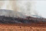 Grassfire [madagascar_7531]