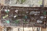 Botanical garden chart