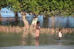 Vezo children walking near mangroves