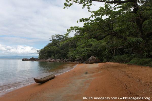 Nosy Mangabe coastline