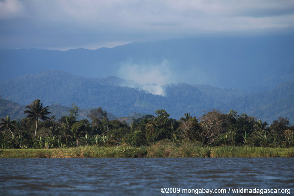 Forest fire near Masoala National Park