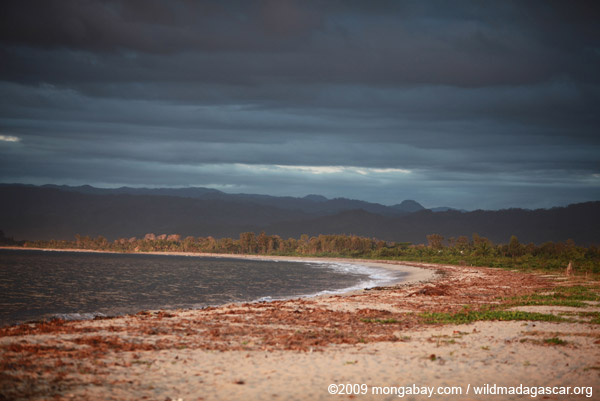 Bay of Antongil beach at dawn