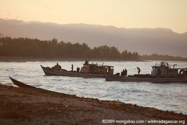 Rosewood trafficking boats