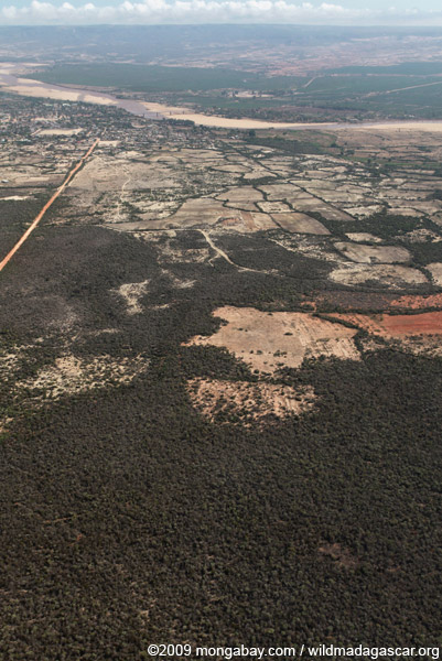 Aerial view of spiny forest destruction near Amboasary