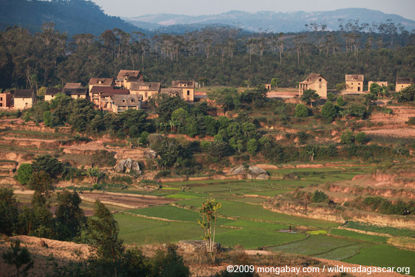 Village, rice fields, and forest in Madagascar. Photo by: Rhett A. Butler.