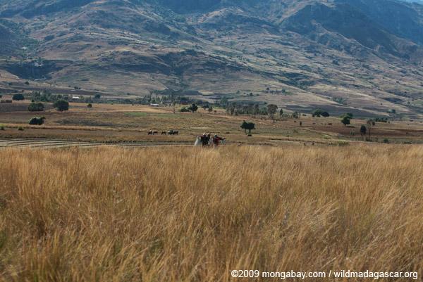 Crossing the Tsaranoro Valley