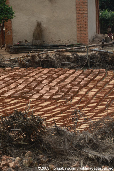 Bricks drying in a village in the Antanifotsy Valley