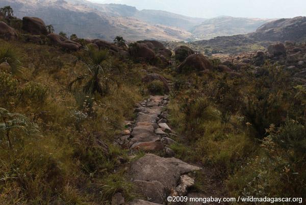 Andringitra trail