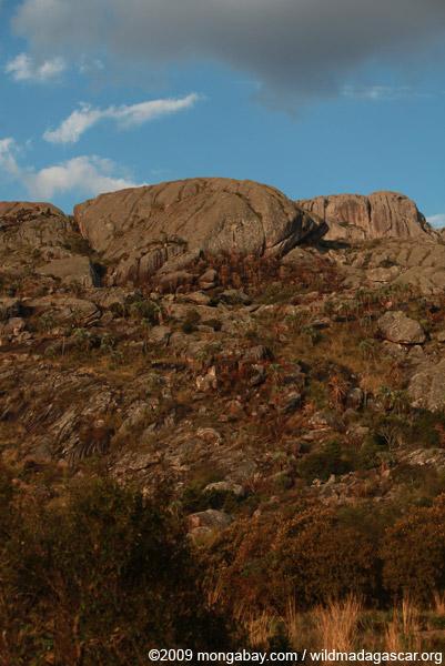 Andringitra landscape