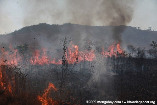 Fire in Madagascar